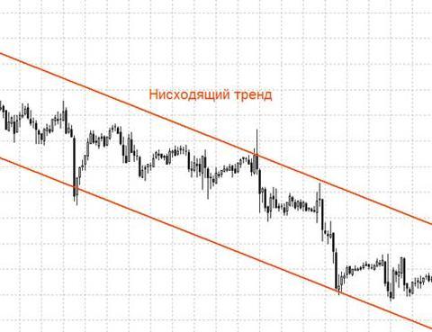 Medvezhiy__niskhodyashchiy__trend