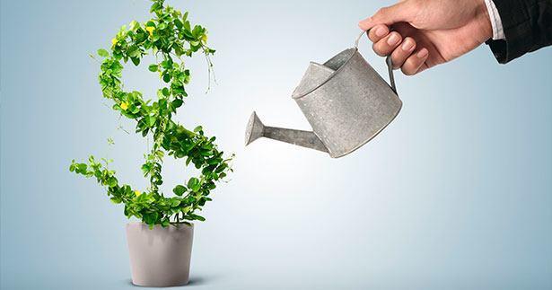 как создать капитал